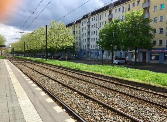 Die Danziger Strasse im Frühling 2019