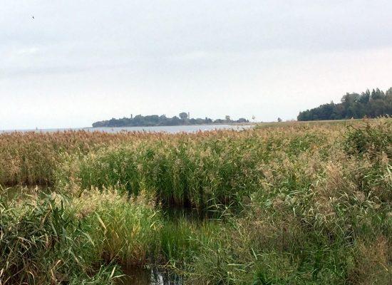 Herbsturlaub - Insel Riems