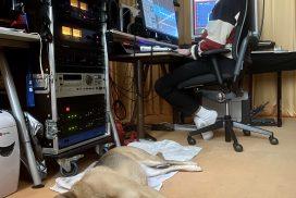 im Studio bei totaltonal